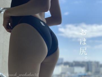「おは尻。」09/24(金) 08:00   わかば【新橋】の写メ