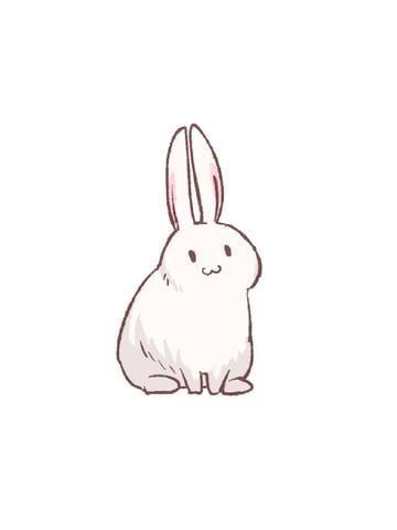 「【アニマル診断】今日の運勢ランキング」02/19(月) 01:27 | みみの写メ・風俗動画