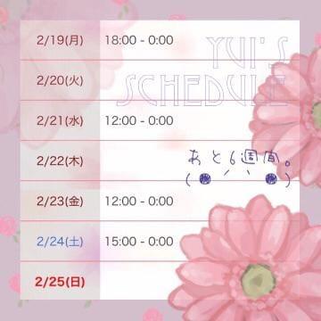 ゆい★予約完売嬢「すけじゅる。」02/19(月) 10:30   ゆい★予約完売嬢の写メ・風俗動画
