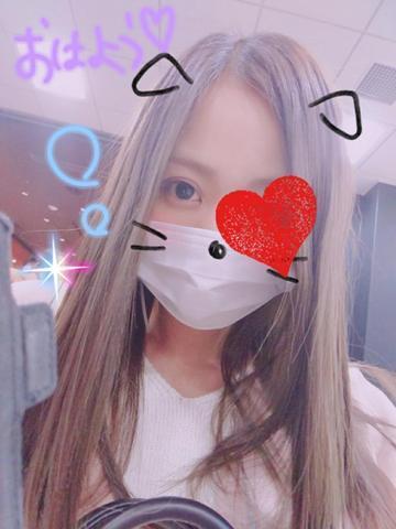 「朝だよん♪」02/19日(月) 11:58   れむの写メ・風俗動画