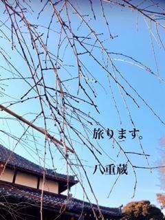 「そろそろ、、(〃ω〃)」02/19(月) 21:06 | やえこの写メ・風俗動画