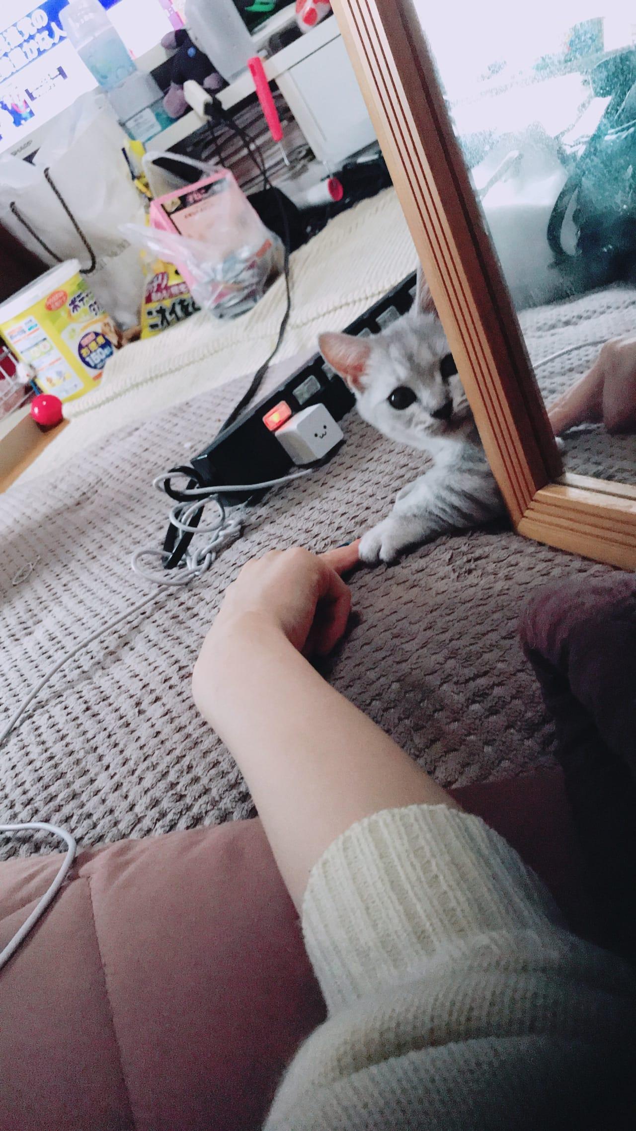 「E.T.」02/19(月) 21:15 | 双子はなかの写メ・風俗動画