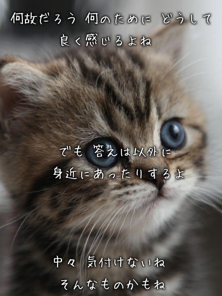 マリナ「感謝です(●^o^●)」02/22(木) 15:23 | マリナの写メ・風俗動画