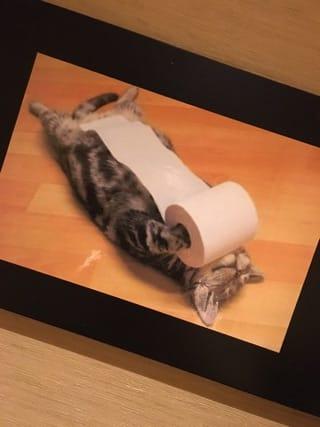 「猫の日?」02/22(木) 23:55 | ーミユウーの写メ・風俗動画
