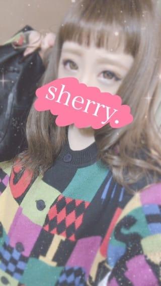 シェリー「おんまゆまゆ」03/17(土) 01:10   シェリーの写メ・風俗動画