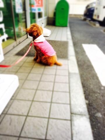 「ありなとおお」03/18(日) 06:21 | りなの写メ・風俗動画