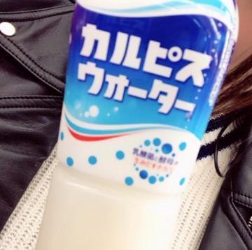 つばさ「相棒?」03/19(月) 08:33   つばさの写メ・風俗動画