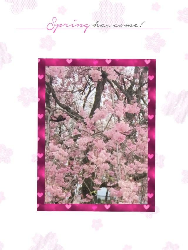 中村-なかむら-「ちょっぴり御無沙汰」03/21(水) 17:34   中村-なかむら-の写メ・風俗動画