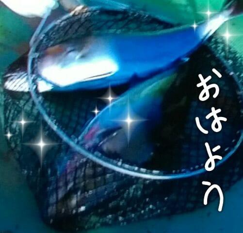 「おはよう^0^)寒い」03/22(木) 10:10 | 麗 『うらら』の写メ・風俗動画