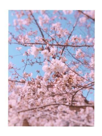 「お。」03/23日(金) 16:03 | こはくの写メ・風俗動画