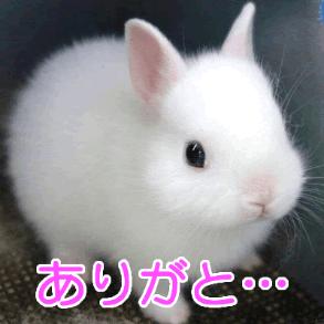 「ありがとうございます(*^^*)」03/24(土) 17:11   みあきの写メ・風俗動画