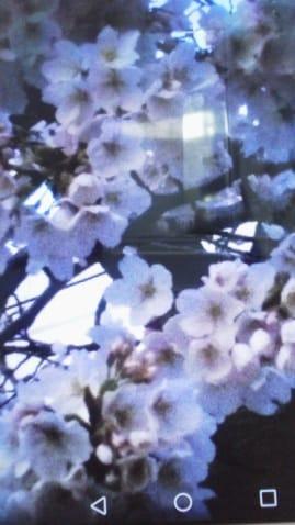 小川彩香「おはようございます」03/25(日) 11:36 | 小川彩香の写メ・風俗動画