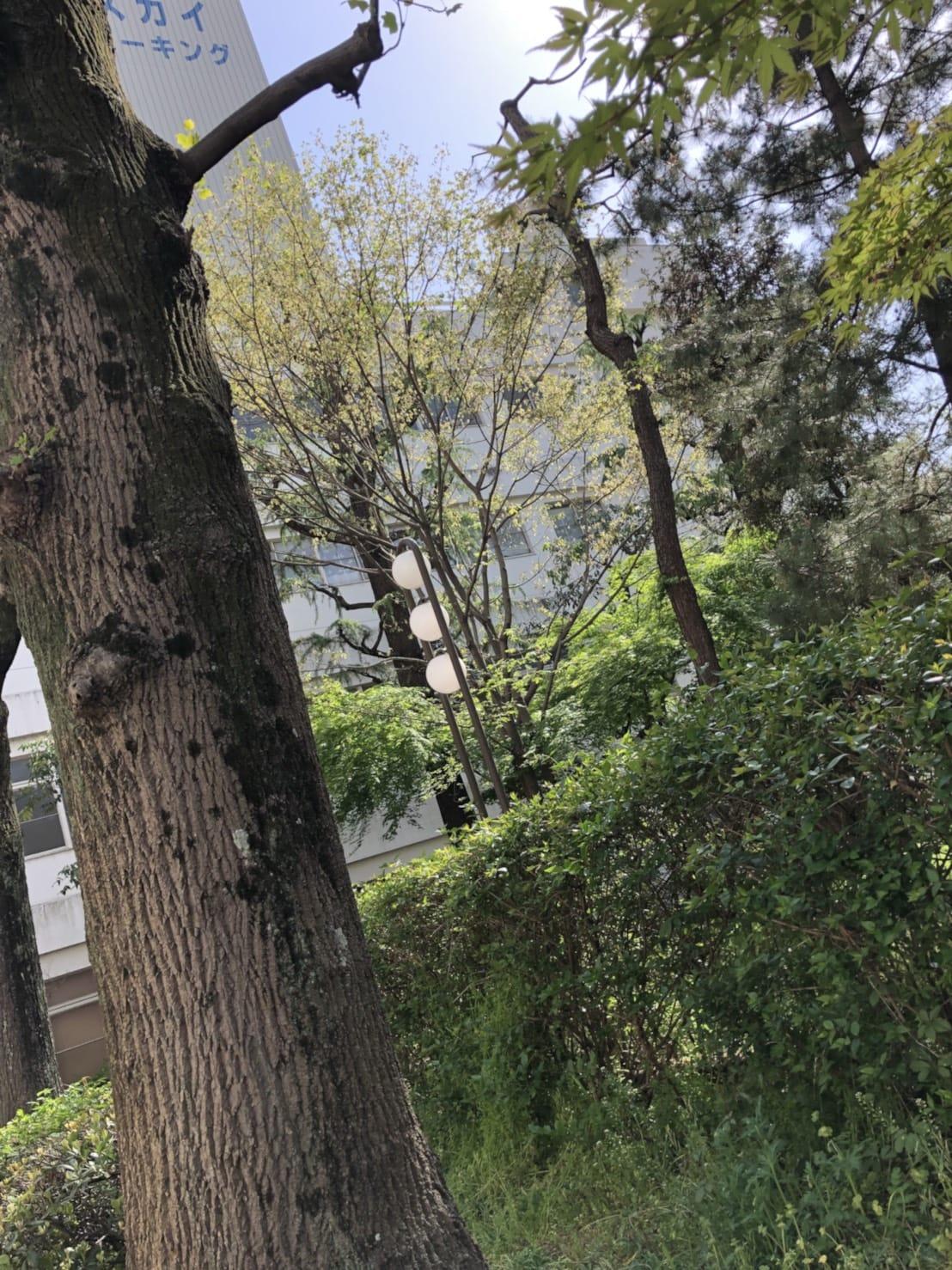 「〜  ポカポカ  〜」04/18(水) 14:52   えりかの写メ・風俗動画