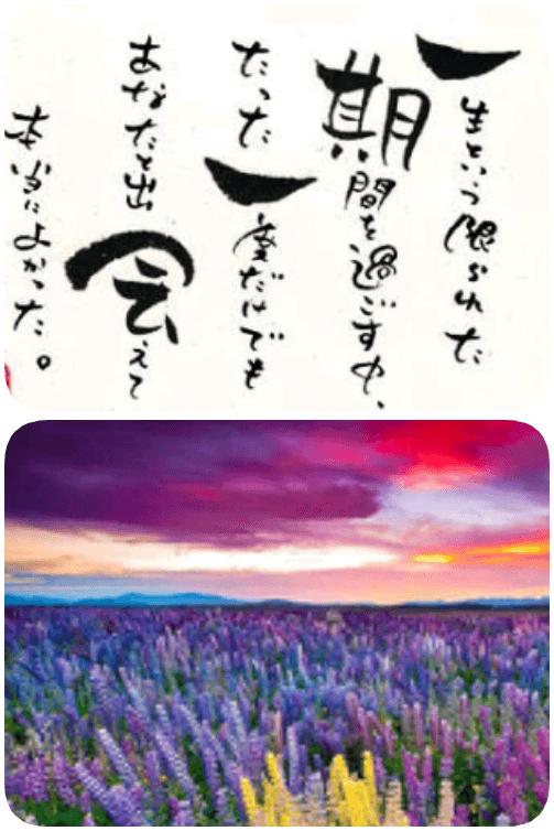 「こんにちわ」04/21(土) 13:46 | たまきの写メ・風俗動画
