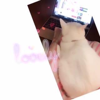 「☆…極…☆」04/22(日) 08:10 | 奏(かな)の写メ・風俗動画