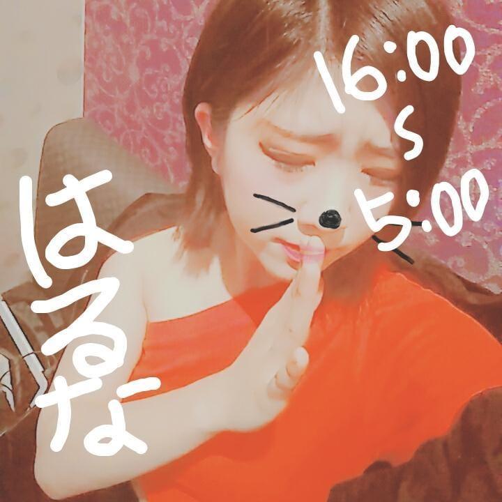 水城はるな「謝罪と出勤予定(´;ω;`)」04/24(火) 14:24 | 水城はるなの写メ・風俗動画