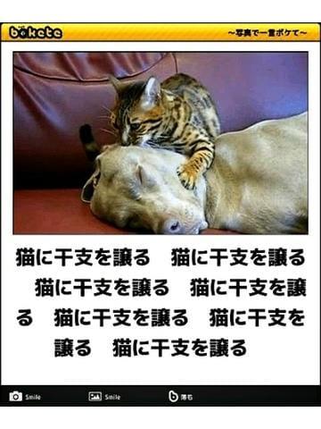 「[エロより笑い!オモシロ写メ公開!]:フォトギャラリー」04/26(木) 01:45 | 亜玖里(あぐり)の写メ・風俗動画