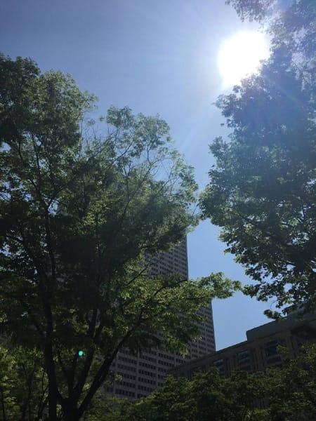 「お散歩」05/05(土) 22:01 | 一瀬 千鶴の写メ・風俗動画