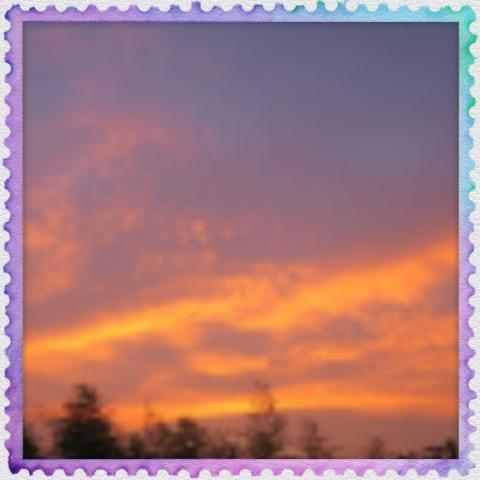 「ききょうWORLD受け付け終了(୨୧•͈ᴗ•͈)◞ᵗʱᵃᵑᵏઽ*♡」05/19(土) 04:01 | 桔梗の写メ・風俗動画