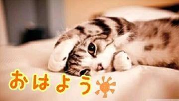 すみこ「おはようございます」05/19(土) 11:09   すみこの写メ・風俗動画