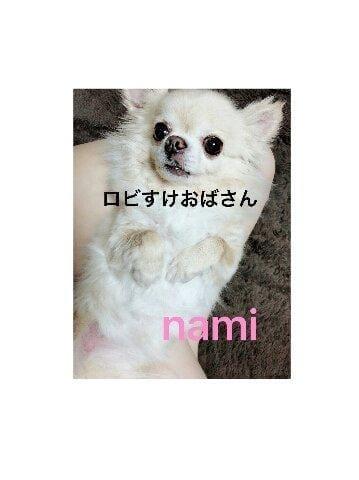 なみ「ぬーけーげー」05/20(日) 00:05 | なみの写メ・風俗動画