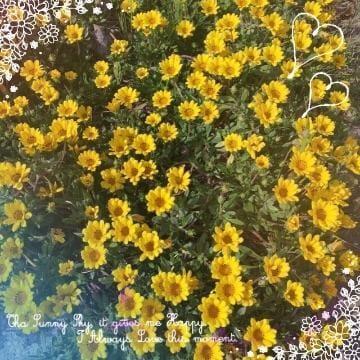 「ありがとう」05/20(日) 01:14 | るみの写メ・風俗動画