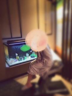 「プラウディア カズナ」05/21(月) 19:06 | ☆かずな(21)☆新人の写メ・風俗動画