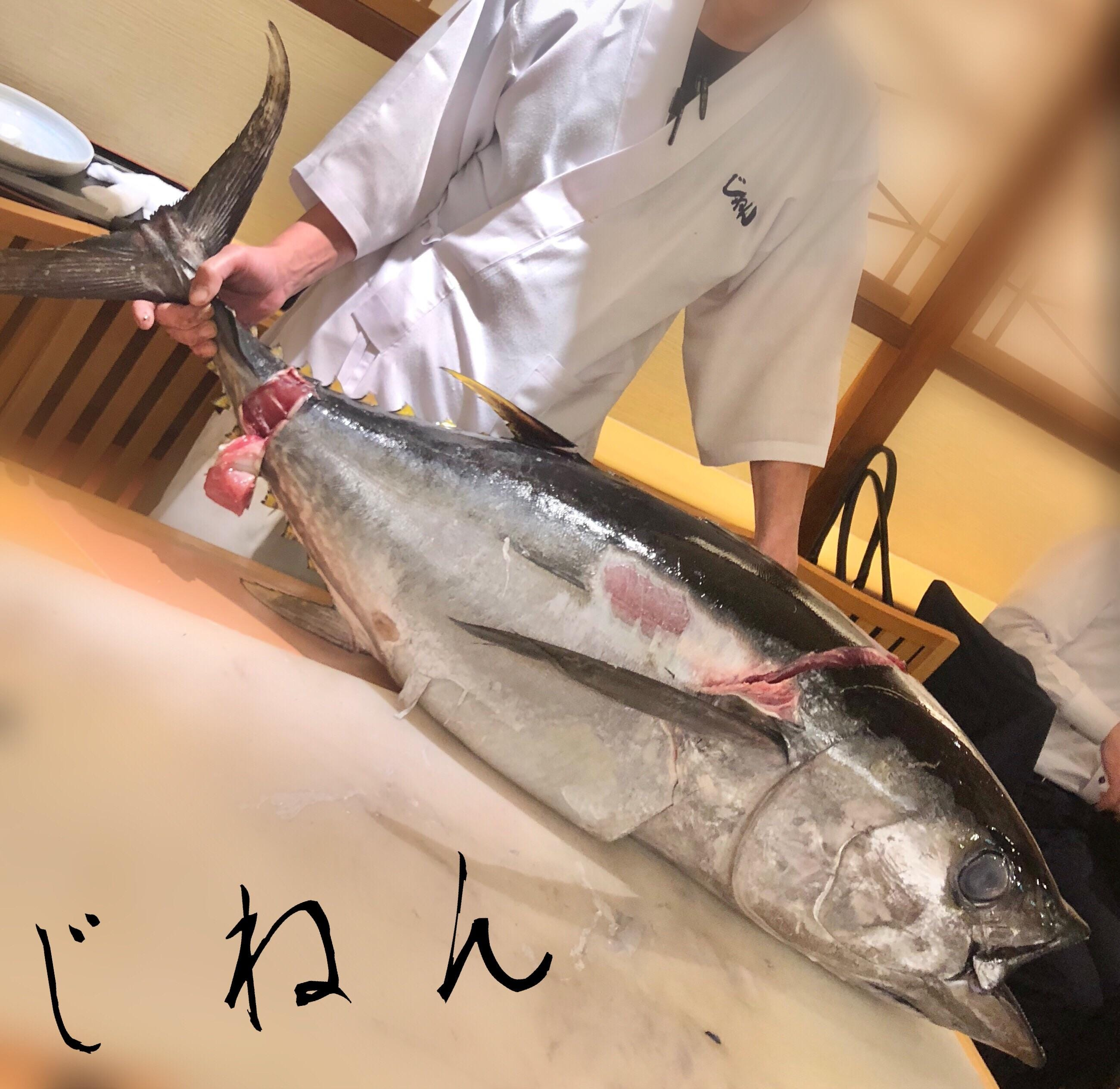 乃木坂さとみ「マグロ解体ショー凄かった」05/23(水) 11:55   乃木坂さとみの写メ・風俗動画
