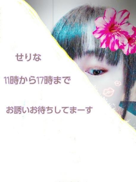 「出勤11時~17時です」05/24日(木) 08:33 | せりなの写メ・風俗動画