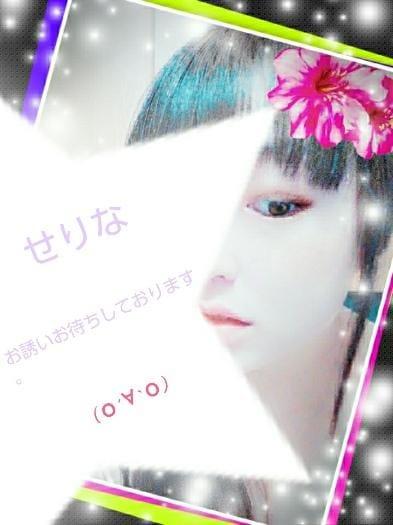 「水戸(о´∀`о)」05/24日(木) 11:10 | せりなの写メ・風俗動画