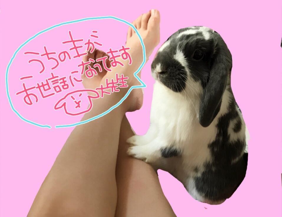 ミヒロ「お休みの日は」05/24(木) 15:43 | ミヒロの写メ・風俗動画