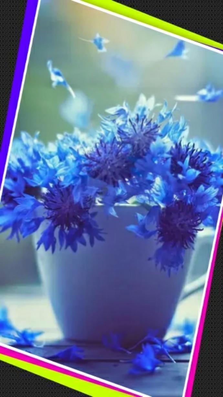 「☆こんばんは☆」05/25(金) 21:08 | 浅水麻弥の写メ・風俗動画