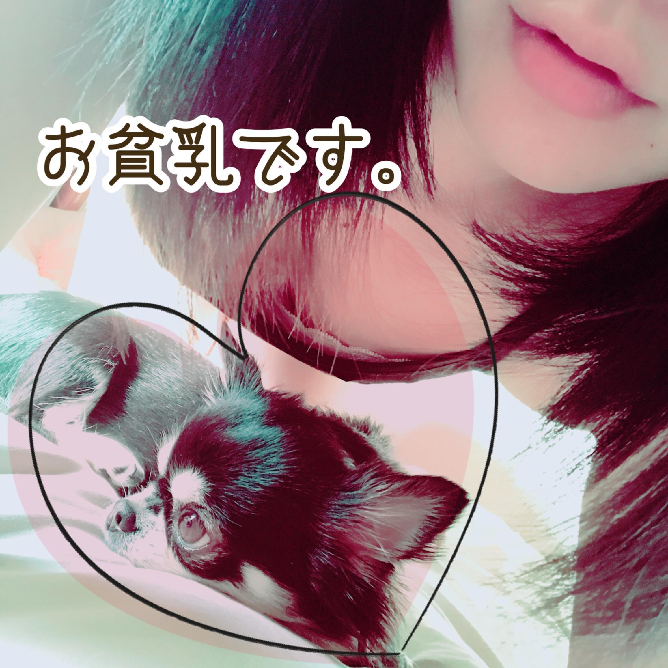 「今日も朝が来る、おまめさん」05/27(日) 06:18   Mame(まめ)の写メ・風俗動画