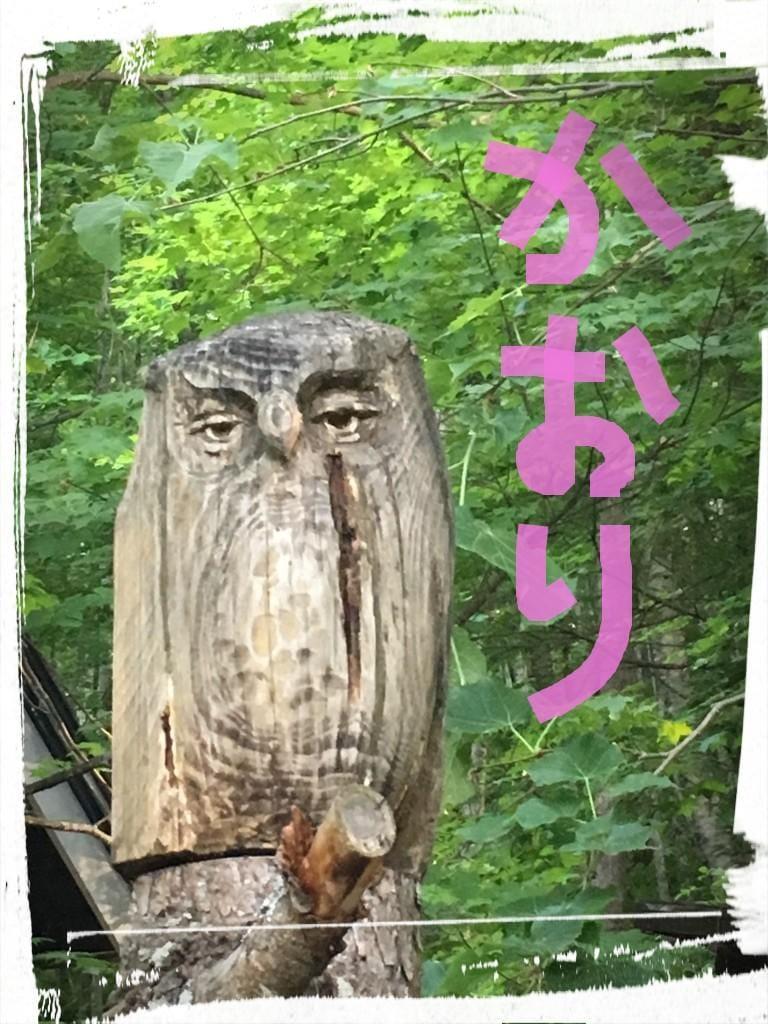 「☆★ふくろう★☆」06/10(日) 00:40 | かおりの写メ・風俗動画