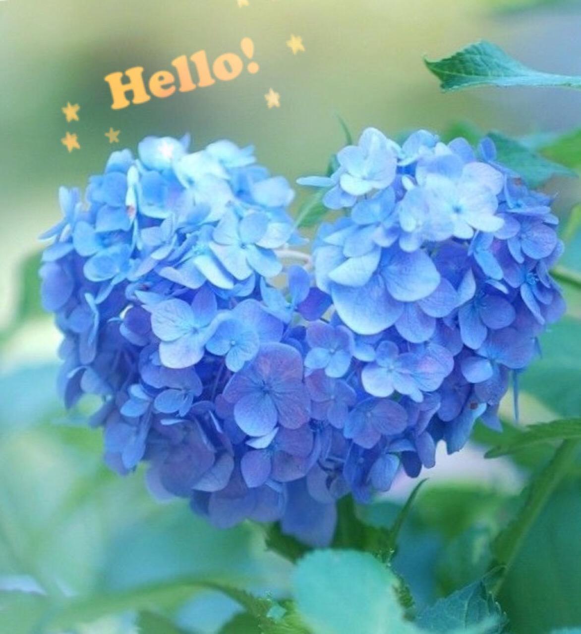 「昨日はー…」06/11(月) 16:53 | 小渕夫人の写メ・風俗動画