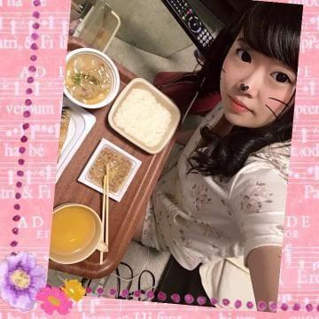 「もぐもぐりん(ᐡ ´ᐧ ﻌ ᐧ ᐡ)♡」06/12(火) 15:15   ななみの写メ・風俗動画