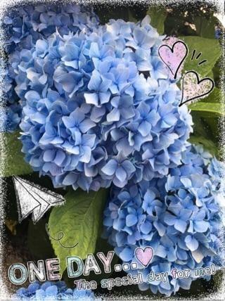 「梅雨の風物詩…」06/14(木) 14:23 | マリエの写メ・風俗動画