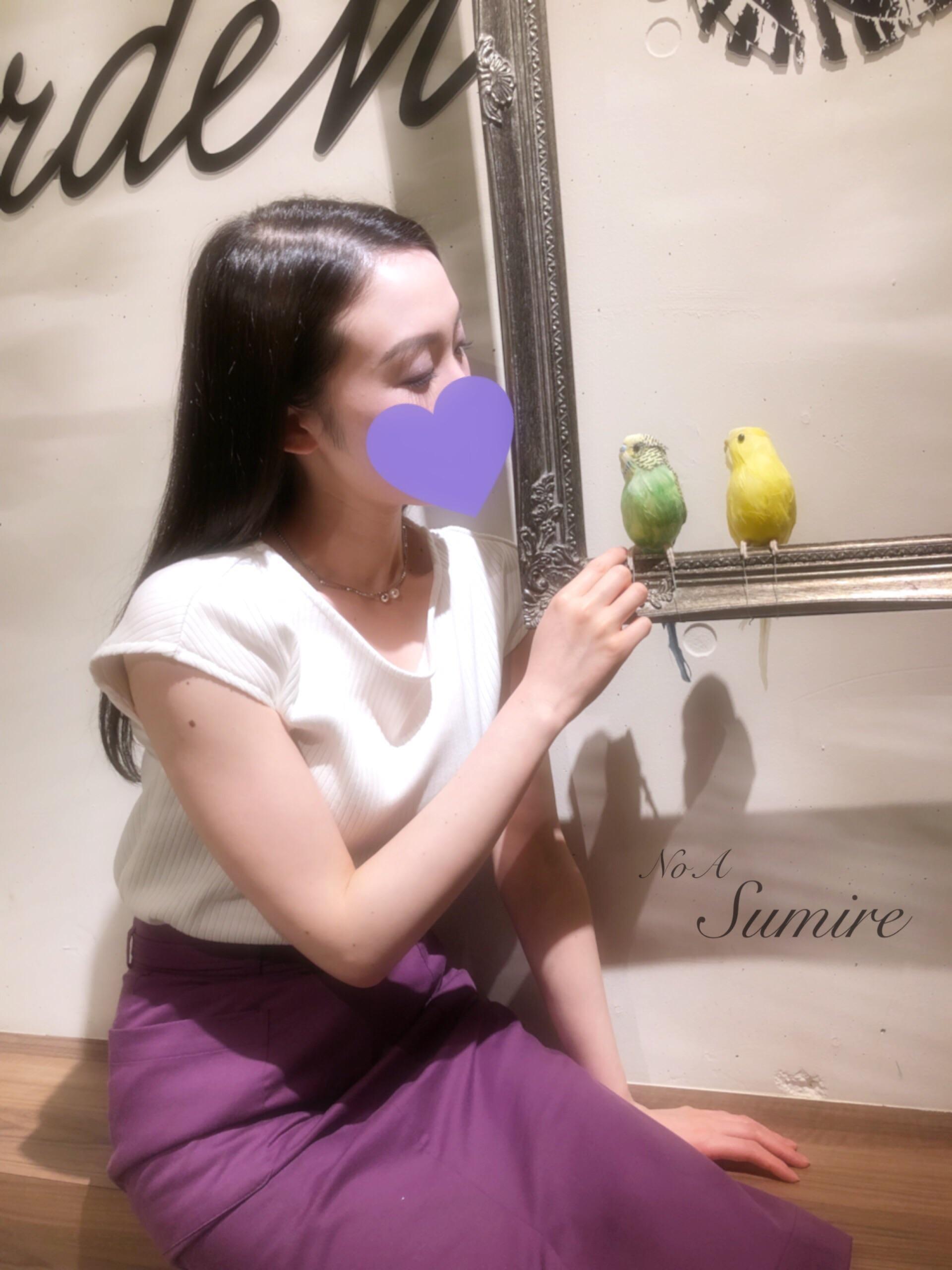 「おはようございます」06/15(金) 05:49 | 澄鈴(すみれ)の写メ・風俗動画
