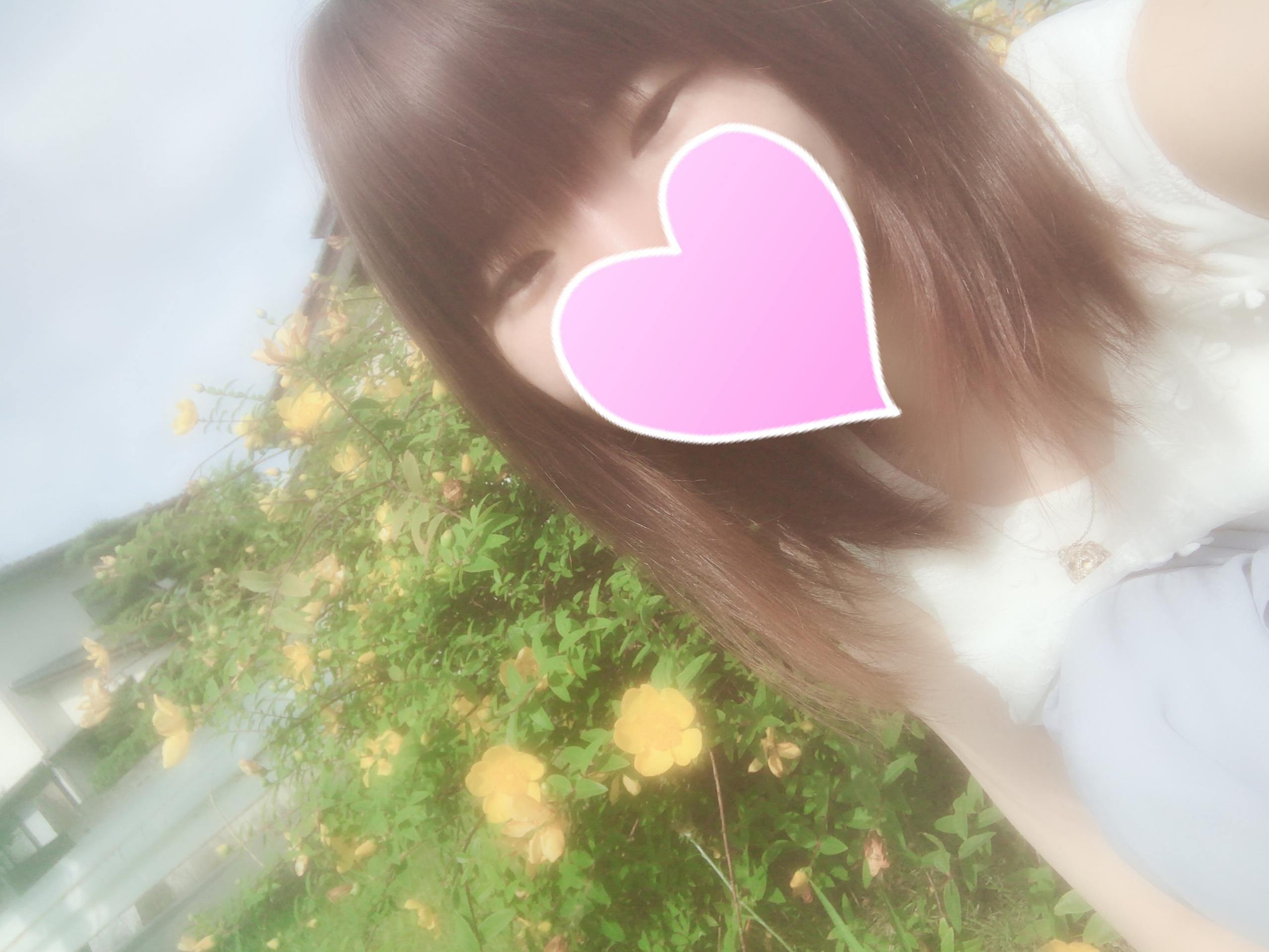 「すずです!」06/18(月) 05:24   すずの写メ・風俗動画