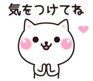 「御礼」06/19日(火) 00:43   【熟女】まりの写メ・風俗動画