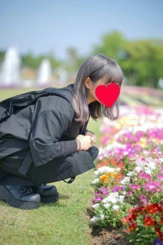 「出勤します❤」06/20(水) 17:18 | なるみの写メ・風俗動画