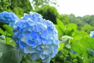りさ「こんにちわ」06/20(水) 19:57   りさの写メ・風俗動画