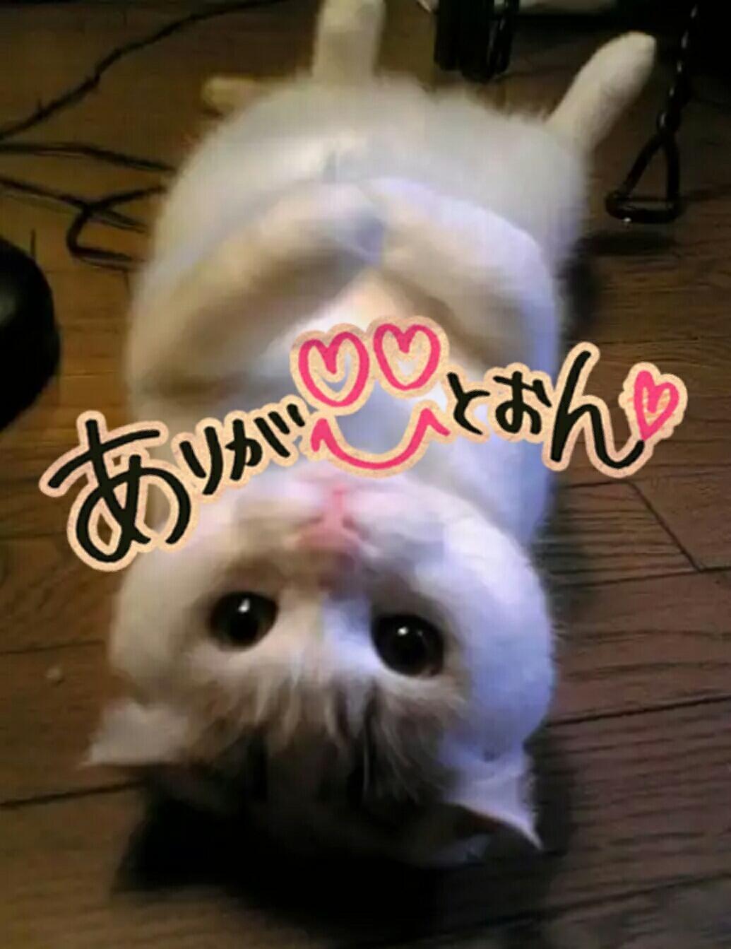 「Me★御礼」06/23日(土) 02:24 | みいの写メ・風俗動画