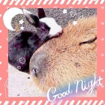 「おやすみ」06/23(土) 04:26   かいり奥様の写メ・風俗動画