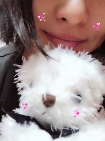 「☆おはようございます☆」06/24日(日) 06:00 | 美沙の写メ・風俗動画