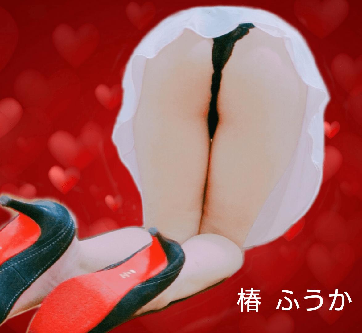 「ふうか 新・回春マッサージ椿」06/24日(日) 10:42   ふうかの写メ・風俗動画