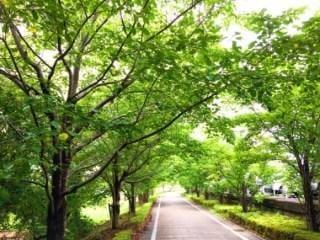 「おはようございます!」06/25(月) 07:28 | 西川さんの写メ・風俗動画