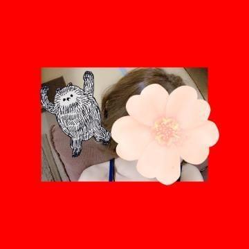 「こんばんわ??」06/29(金) 22:43 | しおんの写メ・風俗動画