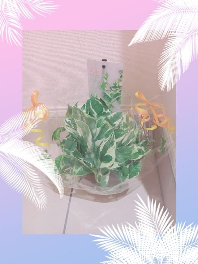 「成長が、楽しみすぎる(≧∀≦)」07/04(水) 23:17 | ほのかの写メ・風俗動画