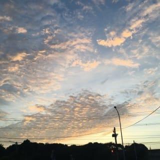 「暑いッ」07/11(水) 23:20 | 魅麗(みれい)☆ S-RANKの写メ・風俗動画